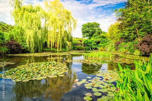Obraz na plátně Pond with lilies in Giverny