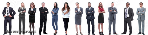 Fotografie, Obraz group of successful business people isolated on white