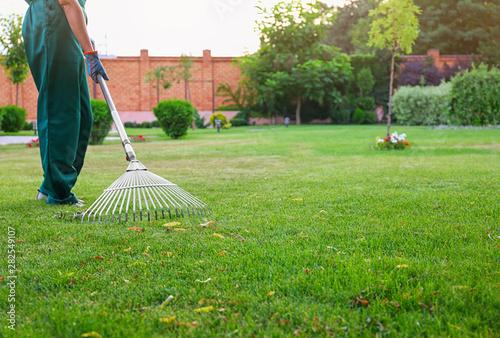 Fotografia Woman raking green lawn at backyard. Home gardening