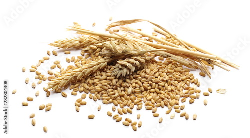 Fotografia Wheat ears and kernels isolated on white background