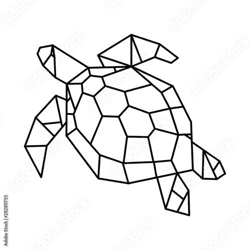 Turtle geometric line art design