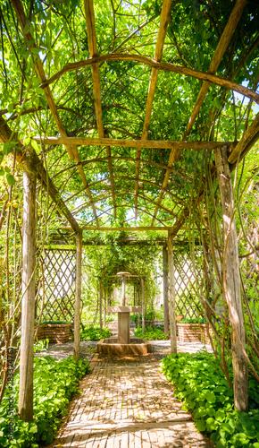 Cuadros en Lienzo Beautiful pathway in a garden in Italy