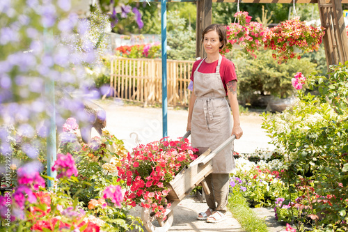 Valokuva Young female gardener with farmer cart standing by one of flowerbeds