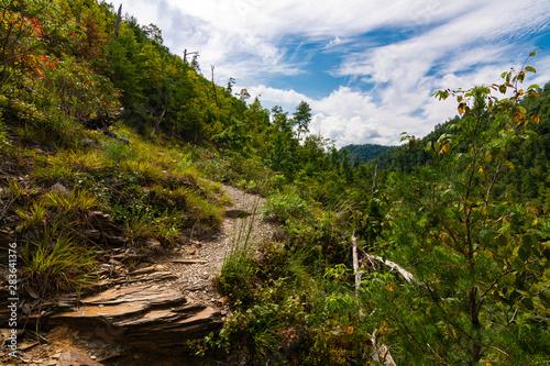 Wallpaper Mural Hatcher Mountain Trail
