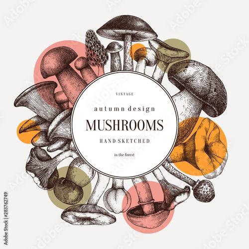 Fotografia Edible mushrooms vector wreath