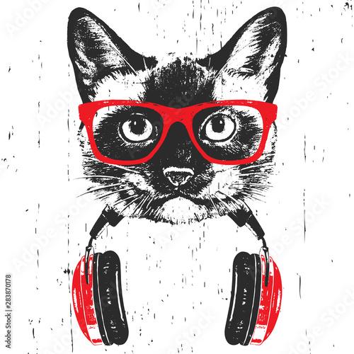Obraz na płótnie Portrait of  Siamese Cat with glasses and headphones