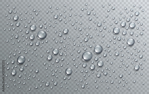 Fotografia Water rain drops or condensation in shower realistic transparent 3d vector composition over transparency checker grid, easy to put over any background or use droplets separately