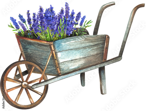 Photographie Wooden wheelbarrow with lavender