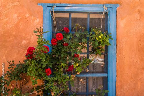 Fototapeta premium Santa Fe, Nowy Meksyk. Malowane na niebiesko drewniane okno kratowe z czerwonym krzewem róży na tle ściany z terakoty