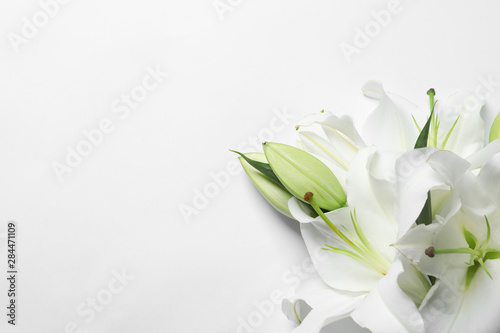 Fotografia Beautiful lilies on white background, top view