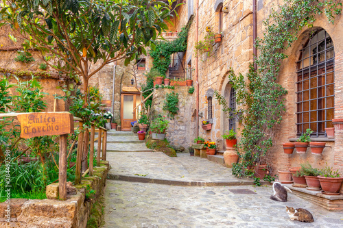 Fotografie, Obraz Beautiful alley in Tuscany, Old town, Italy