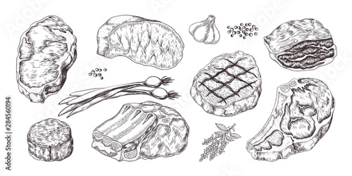 Steak. Vintage sketch with beef and pork chops ribs and fillet, butchery food products with garlic and pepper. Vector illustrations hand drawn fillet meat set with onion, garlic, pepper