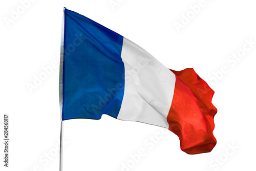 Canvas Print France flag blowing in the wind