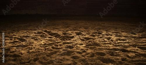 Vászonkép Sandy Rodeo Arena