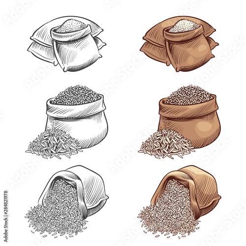 Fototapeta Hand drawn rice sacks vector set