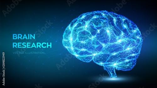 Valokuva Brain