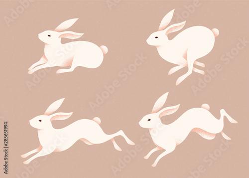 Lovely jumping white rabbits Fototapeta