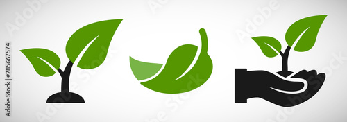 Valokuva Seedling and hand with leaves eco growing icon