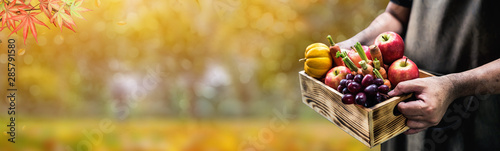 Autumn and Fall season. Harvest cornucopia and Thanksgiving day with eco fruit and vegetable.