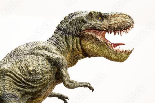 Foto Tyrannosaurus rex dinosaur isolated model on white background
