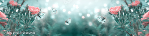 Mysterious spring floral banner with blooming rose flowers and flying butterflies on blurred background in soft pastel colors