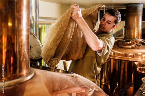 Fotografia Man working in a brewery