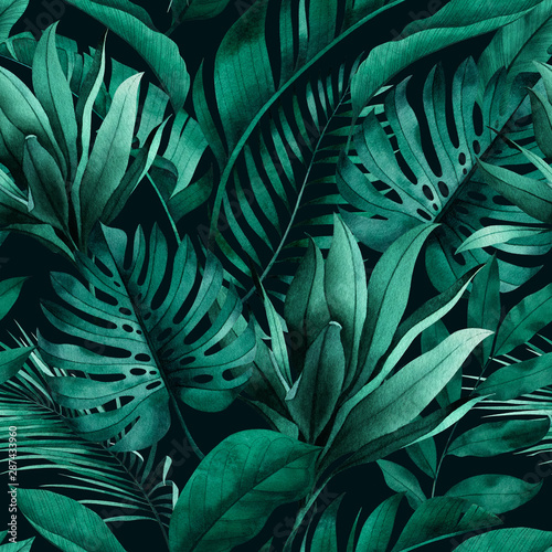 Tropical seamless pattern with exotic monstera, banana and palm leaves on dark background Fototapet
