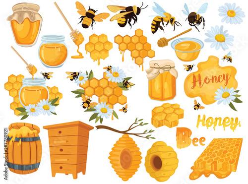 Canvas Print Honey set