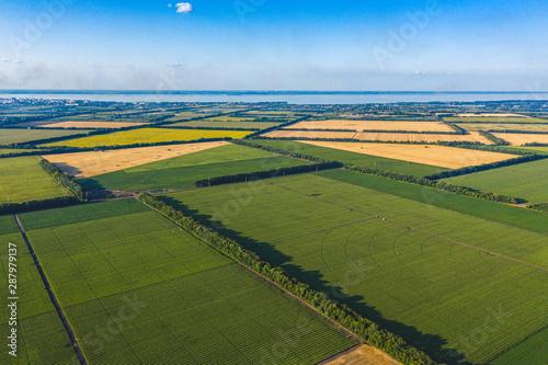 Slika na platnu Aerial Flying Over corn, sunflowers, soybean