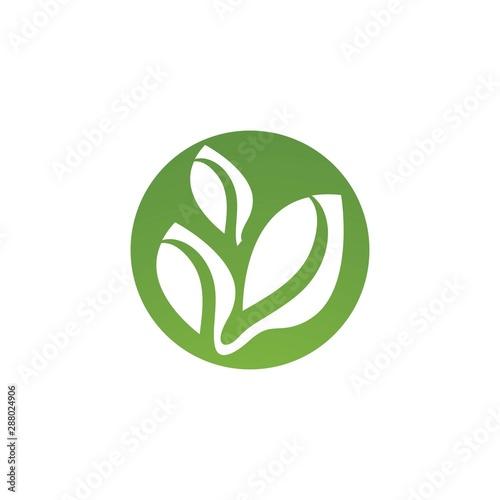 green live logo Fototapet