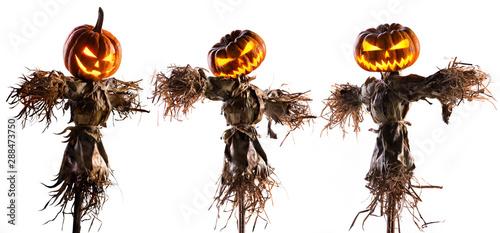 Fotografia halloween pumpkin scarecrow isolated on white background