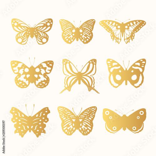 Fotografia Set of golden ornate butterflies silhouettes