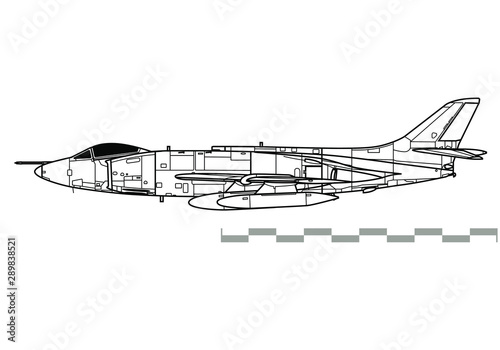 Fotografia Supermarine Scimitar. Outline vector drawing