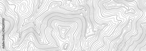 Fotografie, Tablou Light topographic line contour map background, stock vector illustration