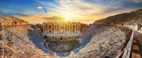 Fotografering Amphitheater in ancient city of Hierapolis and seagull above it