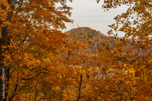 Fototapeta Shallenberger State Nature Preserve in Autumn, Lancaster, Ohio