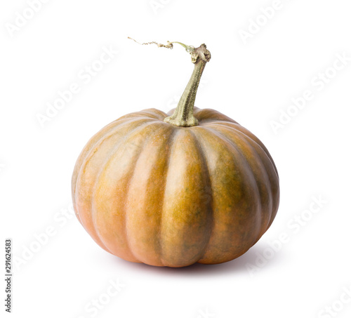 Canvas Print pumpkin isolated on a white background
