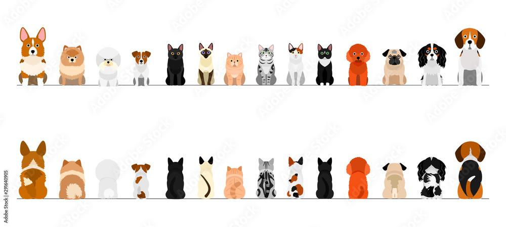 Zestaw obramowania dla małych psów i kotów, pełnej długości, z przodu iz tyłu <span>plik: #291640905   autor: Studio Ayutaka</span>