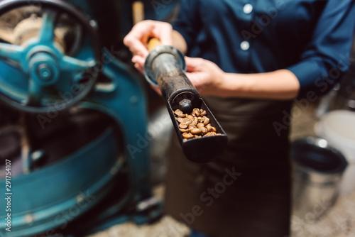 Slika na platnu Woman taking sample of fresh beans from coffee roast machine