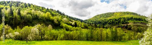 Valokuva panorama of the Carpathian mountains