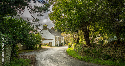 Leinwand Poster English Country Lane and Cottage, Cornwall