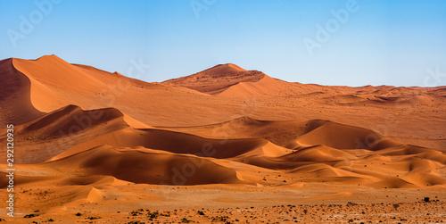 Canvas Print Panorama landscape of orange sand dune desert with clear blue ky at Namib desert in Namib-Naukluft national park Sossusvlei in Namibia