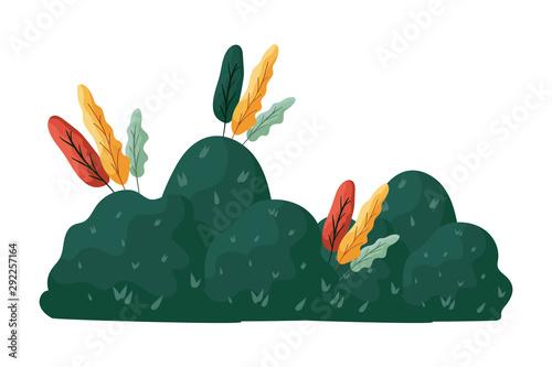 Canvas Print autumn bush plant seasonal icon