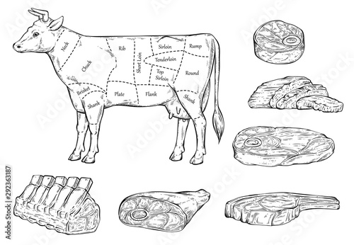 Fotografía Meat cuts diagram for butcher shop line sketch vector illustration isolated