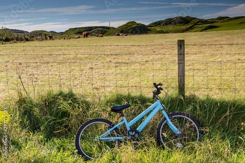 Fotografia, Obraz Blue Bike Leaning on a Fence in Front of a Field, Isle of Iona, Scotland
