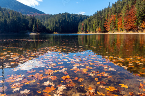 Wallpaper Mural Perfect autumn tree reflections in lake