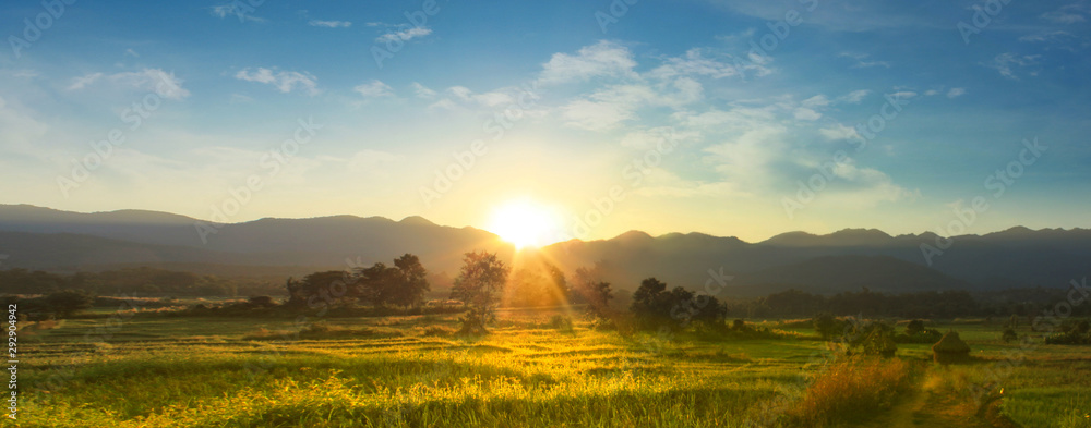Sunset over vast blossoming meadow landscape