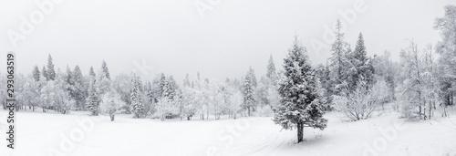 Winter landscape. Taganay national Park, Chelyabinsk region, South Ural, Russia