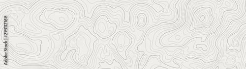 Fotografie, Tablou topographic line contour map background, geographic grid map