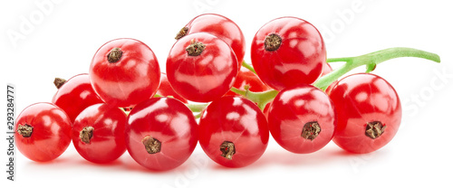 Photo Red currant Clipping Path